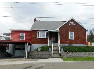Broome County, Cayuga County, Chenango County, Cortland County, Delaware County, Tioga County, Tompkins County Single Family Home For Sale: 49 Riverview Ave
