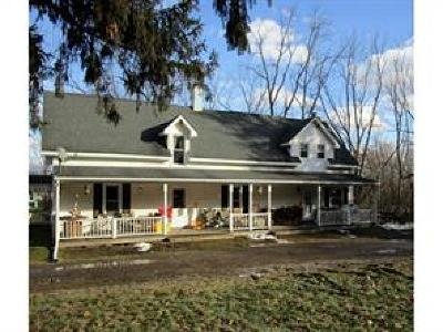 Owego Single Family Home For Sale: 145 West Beecher Hill Road
