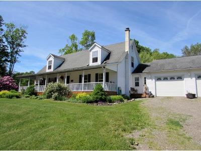 Owego Single Family Home For Sale: 1304 Straits Corners Road