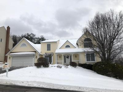 Endicott Single Family Home For Sale: 2640 Clearview Drive