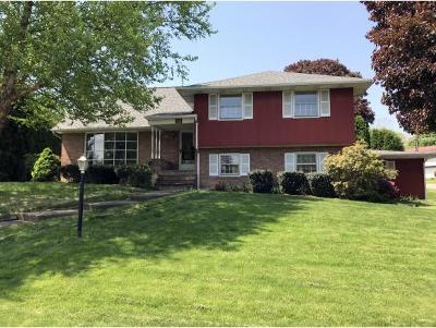 Endicott NY Single Family Home For Sale: $214,900