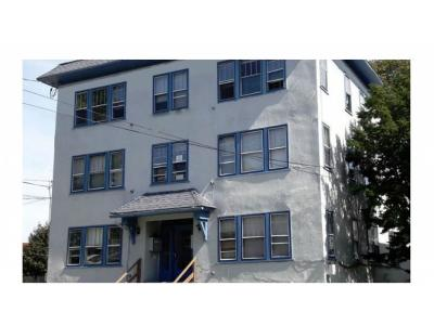 Binghamton Multi Family Home For Sale: 86 Oak Street