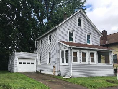 Johnson City Single Family Home For Sale: 38 Camden St