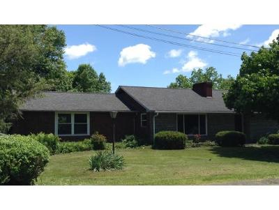 Conklin Single Family Home For Sale: 133 Woodcrest Way