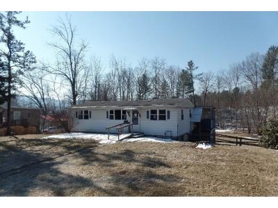 Bradford County Single Family Home For Sale: 129 Patton Hill Road