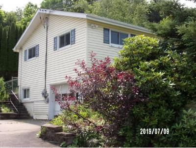 Apalachin Single Family Home For Sale: 45 Frederick Dr.