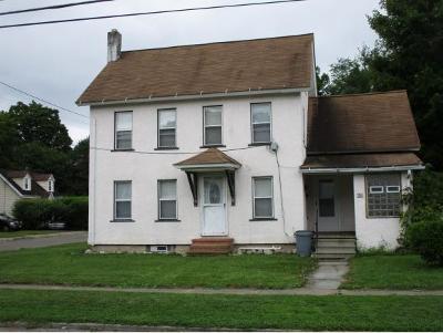 Endicott Multi Family Home For Sale: 20 Mechanic Avenue