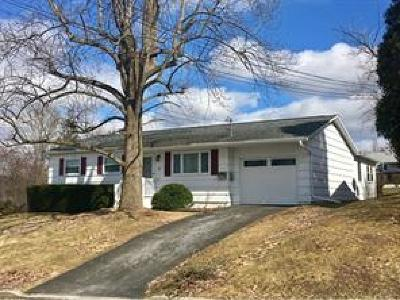 Owego Single Family Home For Sale: 9 Woodlawn Avenue
