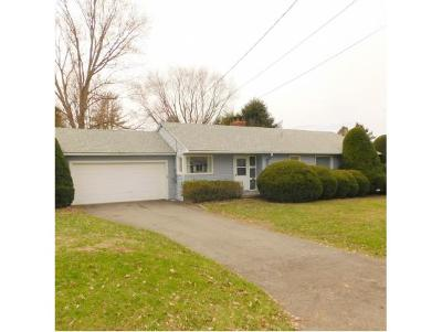 Sidney NY Single Family Home For Sale: $149,000