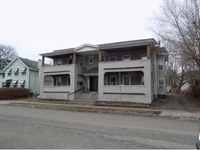 Binghamton Multi Family Home For Sale: 175 Chapin St.