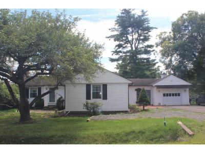 Endicott Single Family Home For Sale: 311 Cafferty Hill Road