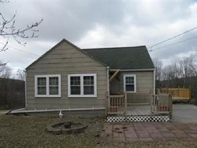 Binghamton Single Family Home For Sale: 657 North Road