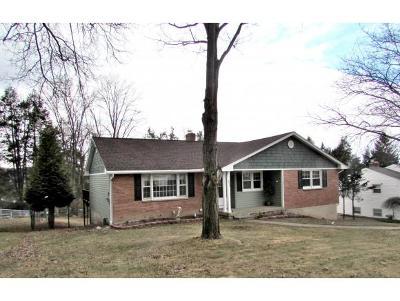 Vestal Single Family Home For Sale: 512 Colgate Street