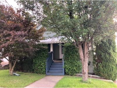 Johnson City Single Family Home For Sale: 42 Albany Ave