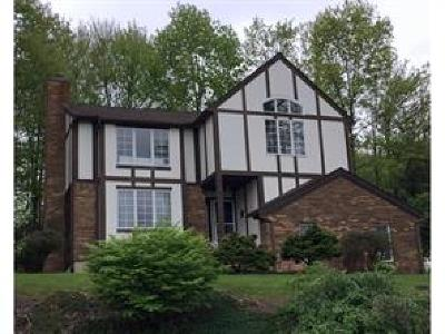 Endicott Single Family Home For Sale: 1037 Briarwood Drive