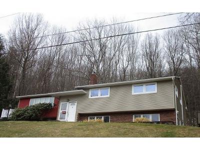 Vestal Single Family Home For Sale: 920 Cherry Lane