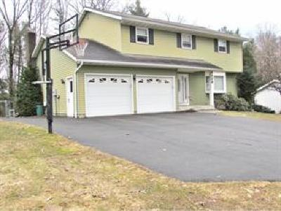 Endicott Single Family Home For Sale: 1129 Simon Road