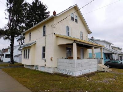 Endicott Single Family Home For Sale: 1101 Pine Street