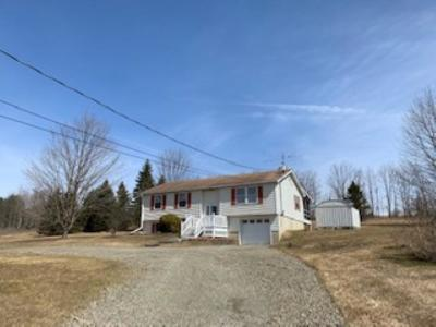 Newark Valley Single Family Home For Sale: 804 Tiona Road