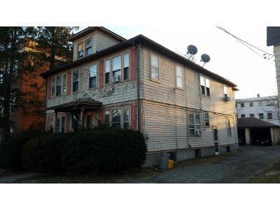 Johnson City Multi Family Home For Sale: 80 Albert