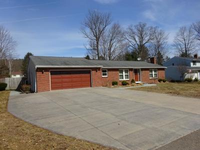 Binghamton Single Family Home For Sale: 73 Matthew Drive