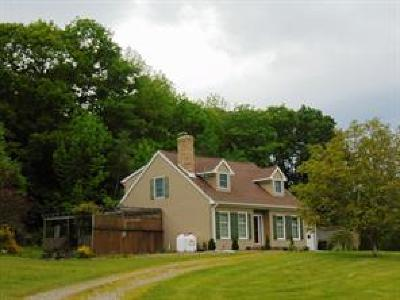 Owego Single Family Home For Sale: 21 Fred Catlin Road
