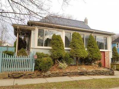 Owego Single Family Home For Sale: 136 McMaster Street