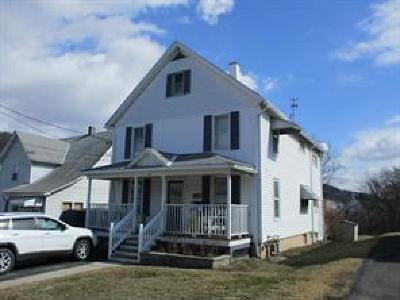 Binghamton Multi Family Home For Sale: 30 Wilson St