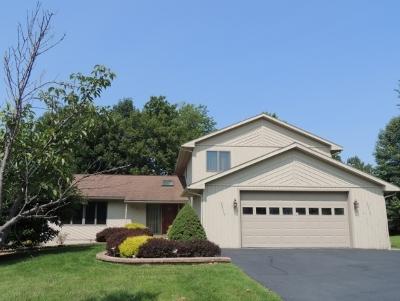 Vestal Single Family Home For Sale: 3121 Knapp Road