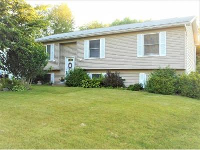 Apalachin Single Family Home For Sale: 158 McFadden Road