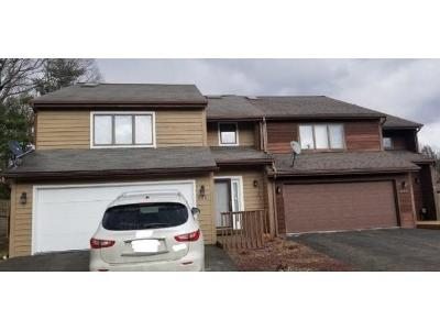 Vestal Single Family Home For Sale: 625 Country Club Rd