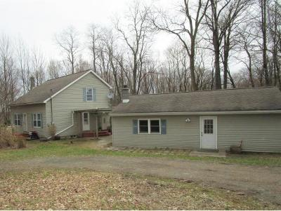 Broome County, Cayuga County, Chenango County, Cortland County, Delaware County, Tioga County, Tompkins County Single Family Home For Sale: 750 Bowbell Road