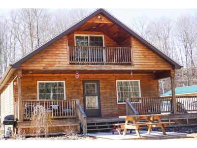 Broome County, Chenango County, Cortland County, Tioga County, Tompkins County Single Family Home For Sale: 178 Howe Lane