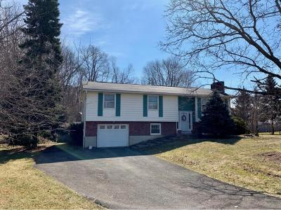 Conklin NY Single Family Home For Sale: $145,000