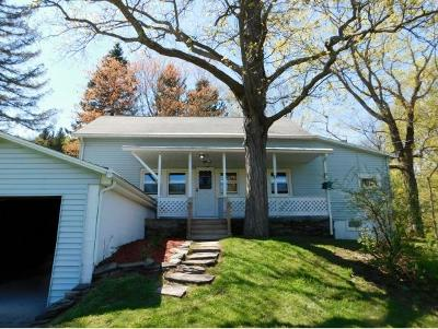 Binghamton Single Family Home For Sale: 1705 Old State Road