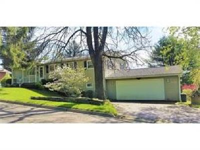 Endicott Single Family Home For Sale: 836 Milan Ave.