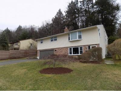 Vestal Single Family Home For Sale: 3828 Pembrooke Lane