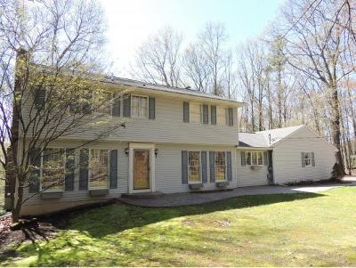 Vestal Single Family Home For Sale: 219 Noyes Road