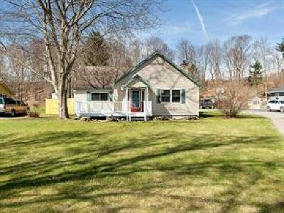 Broome County, Cayuga County, Chenango County, Cortland County, Delaware County, Tioga County, Tompkins County Single Family Home For Sale: 1319 River Road