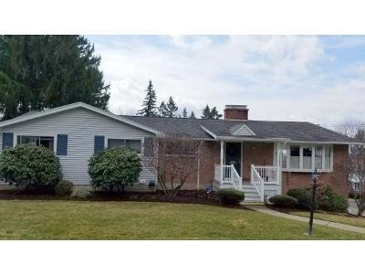 Endwell Single Family Home For Sale: 3712 Maplehurst Rd