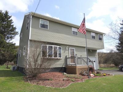Endicott Single Family Home For Sale: 1402 Union Center Maine Hwy