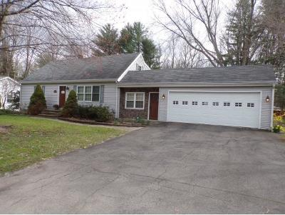 Apalachin Single Family Home For Sale: 2773 Marshland Rd