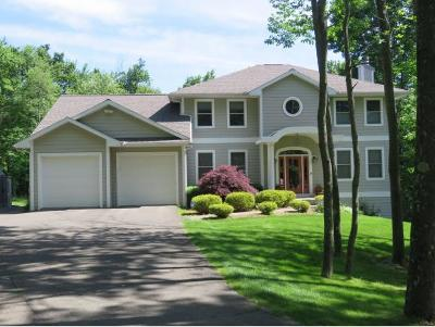Vestal NY Single Family Home For Sale: $525,000