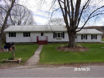 Newark Valley Single Family Home For Sale: 70 Danton Dr