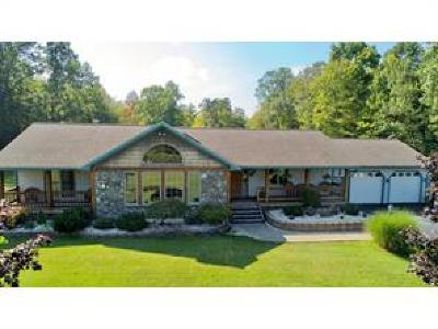 Chenango Single Family Home For Sale: 795 Brotzman Road