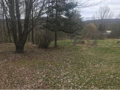 Windsor NY Residential Lots & Land For Sale: $300,400