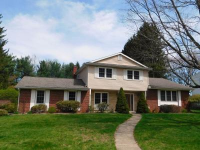 Apalachin Single Family Home For Sale: 4 Dorothy Road