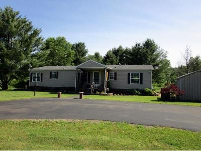 Chenango Single Family Home For Sale: 460 Cloverdale