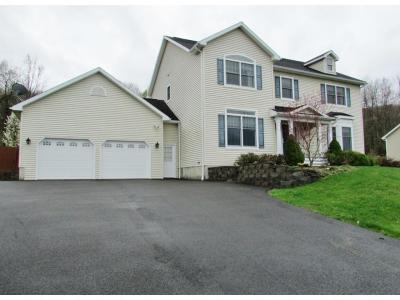Vestal NY Single Family Home For Sale: $479,900