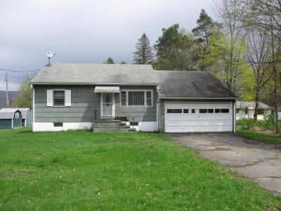 Conklin Single Family Home For Sale: 356 Hardie Road